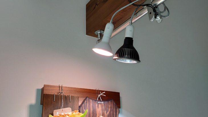 植物を室内管理する良いところ【おすすめ植物育成用LEDライト】